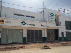 La suegra aviadora, 30 mil pesos al mes en el Conalep del Centro