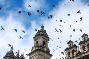 La Plaza de Bolivar, Bogotá - Foto por Jake Ling
